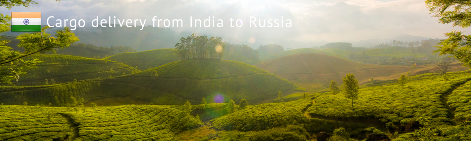 Cargo delivery from India to Russia