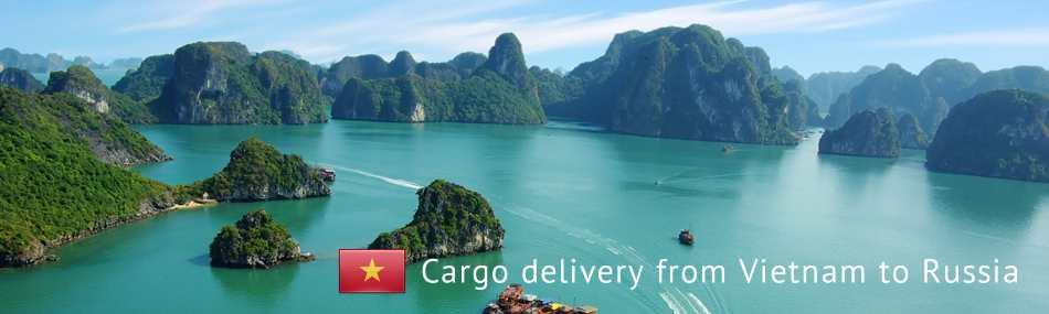 Cargo delivery from Vietnam to Russia