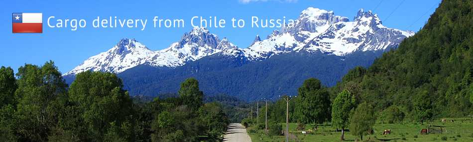 Cargo delivery from Chile to Russia