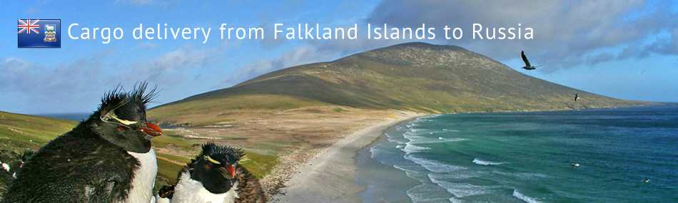 Cargo delivery from Falkland Islands to Russia
