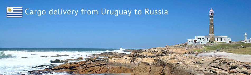 Cargo delivery from Uruguay to Russia