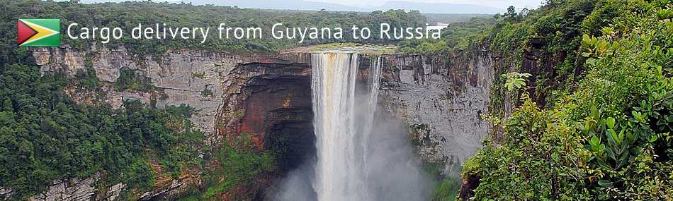 Cargo delivery from Guyana to Russia