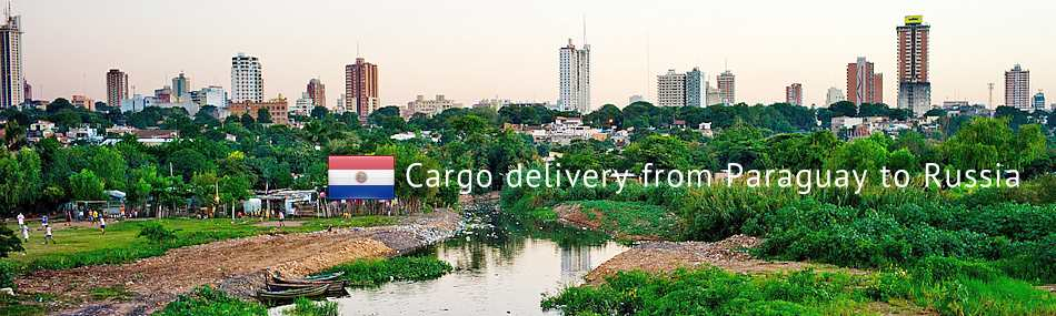 Cargo delivery from Paraguay to Russia