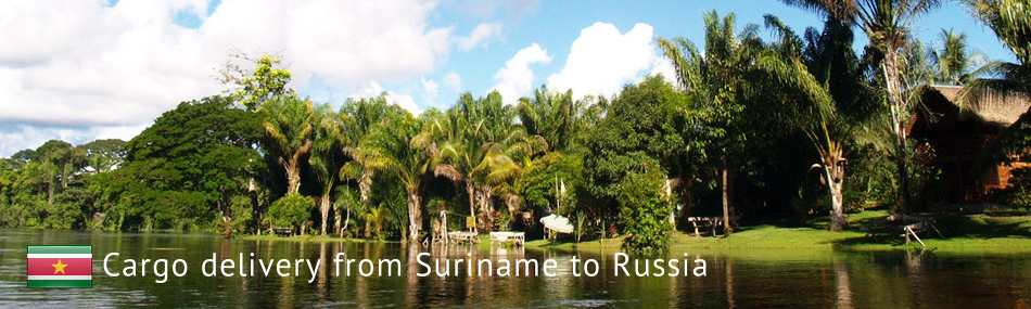 Cargo delivery from Suriname to Russia