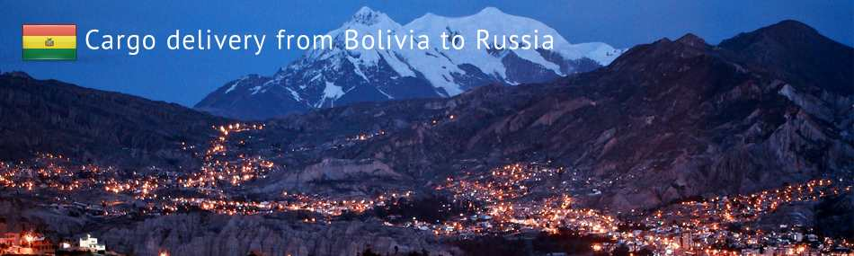 Cargo delivery from Bolivia to Russia